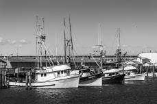 Scoma's Fleet